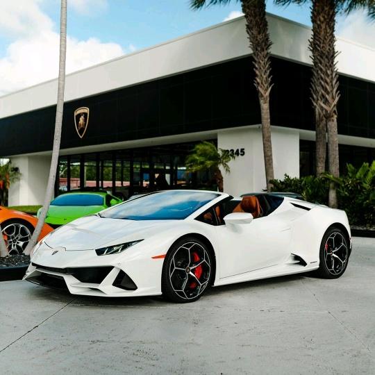 Lamborghini_1 TikTok