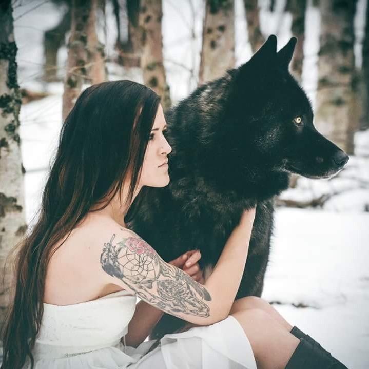 NWWolfdogs TikTok