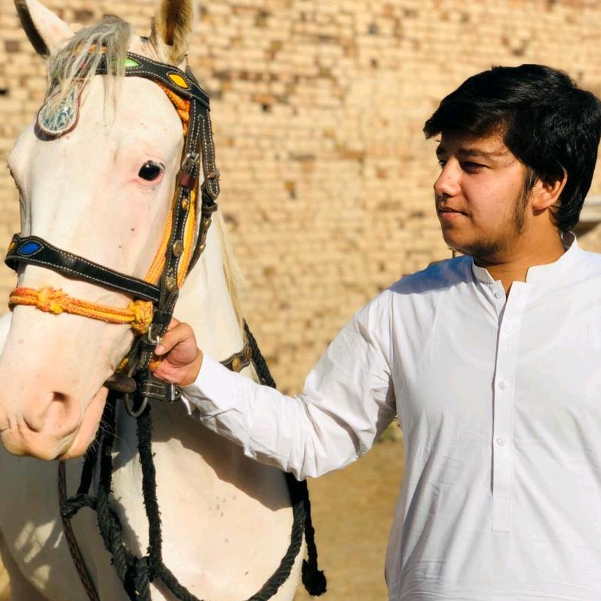Bilal Manj TikTok
