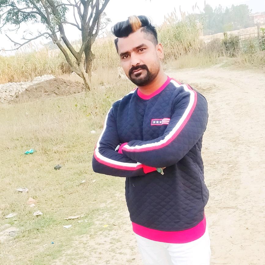 Vlcky Pahelwan TikTok
