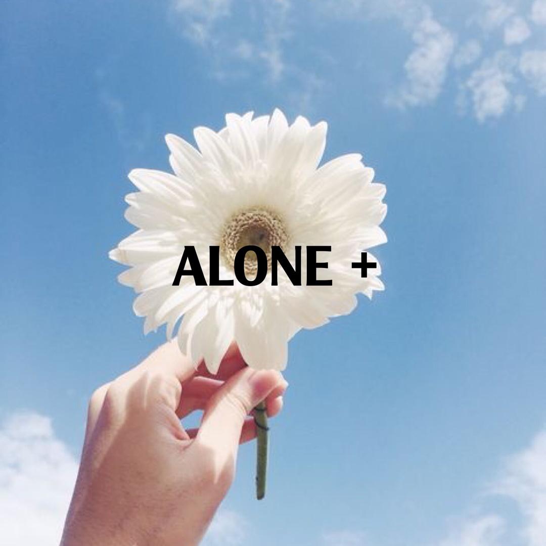 alone16122001 TikTok