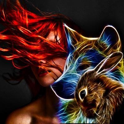 Bunny N' Wolf 2.0 TikTok