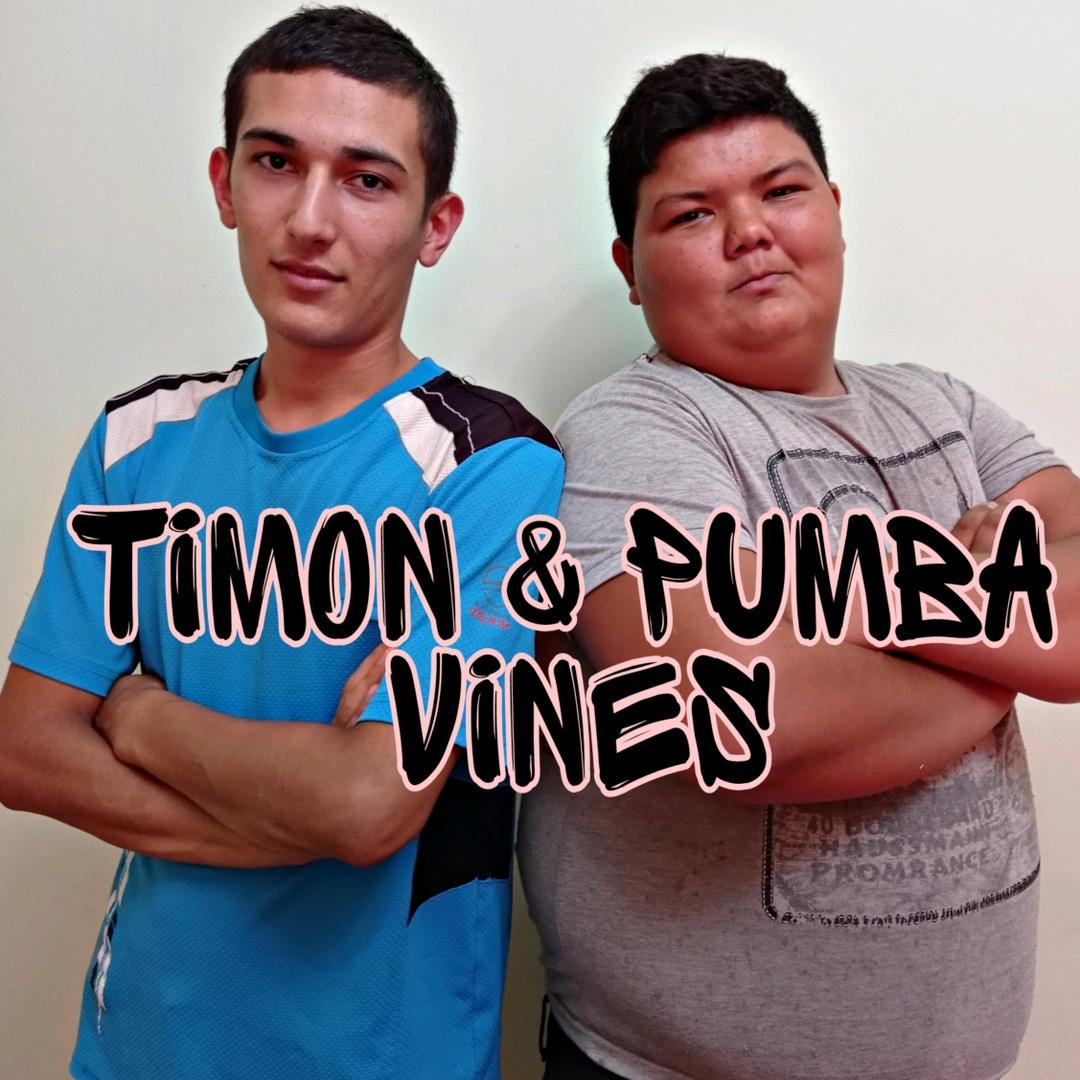 Timon & Pumba TikTok