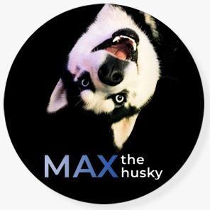 Max The Husky TikTok