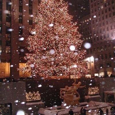 Happy Holidays <3 TikTok