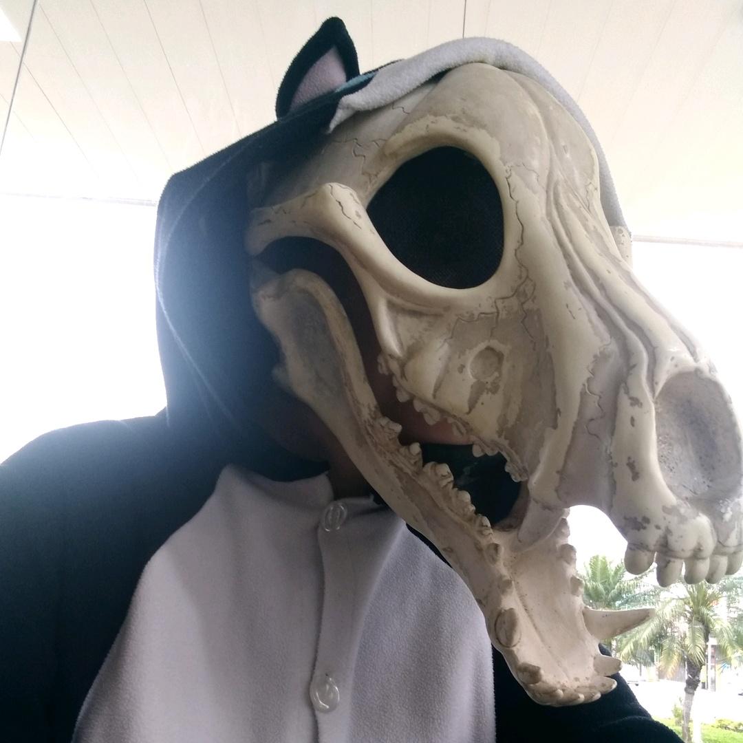 Loki, o Skulldog TikTok