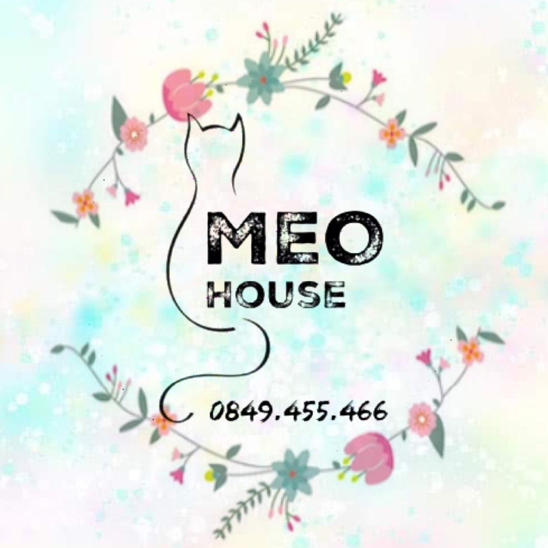 MeO House TikTok