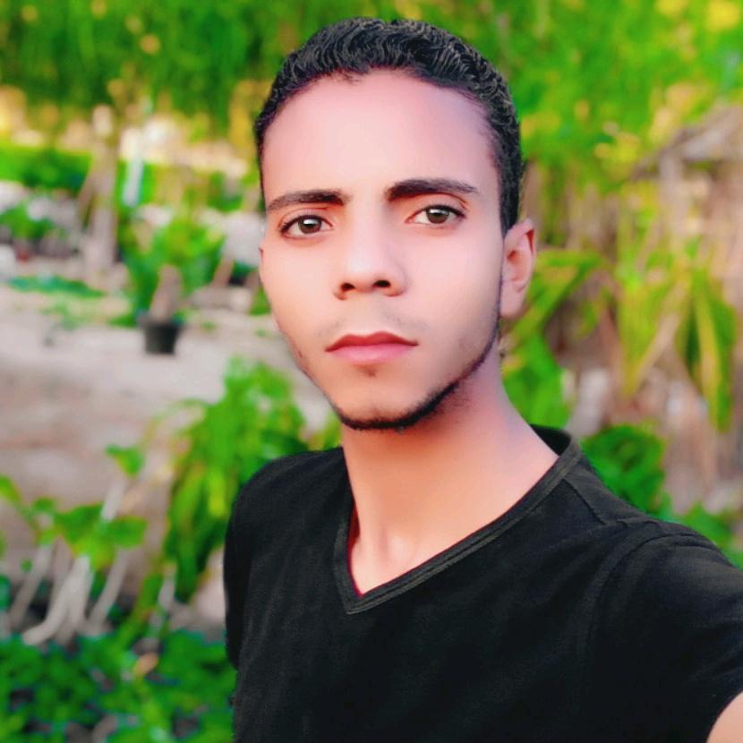 هكر مصر TikTok